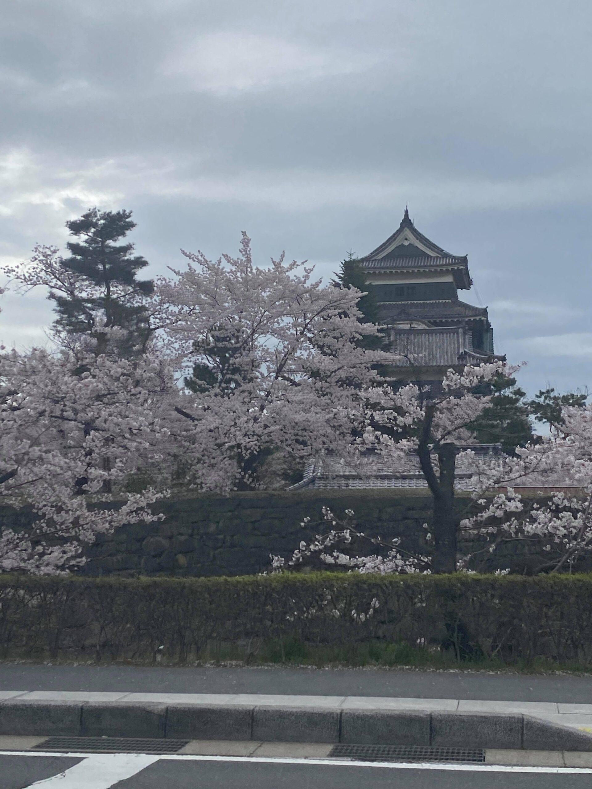 【J#77】安曇野・松本への旅(1)〜自分の専門外の人たちと親睦を深める機会〜改めて「内観」とは何か?
