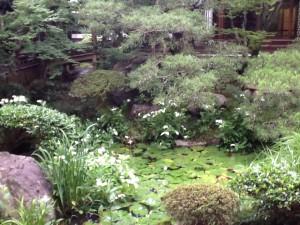 【Y#28】プラーナーヤーマ・連続講座(1)〜飛び入りとヨガ哲学